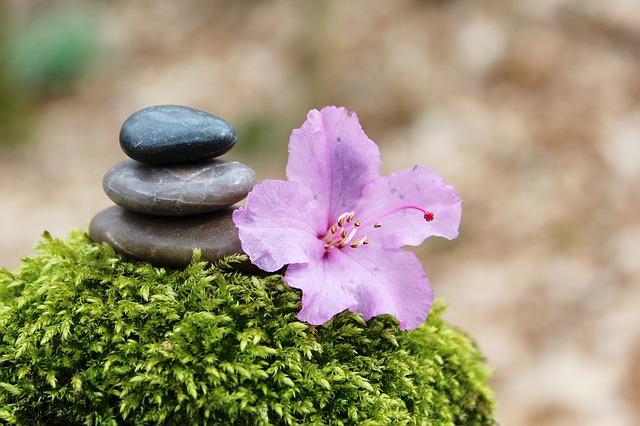 Mindfulness en primavera
